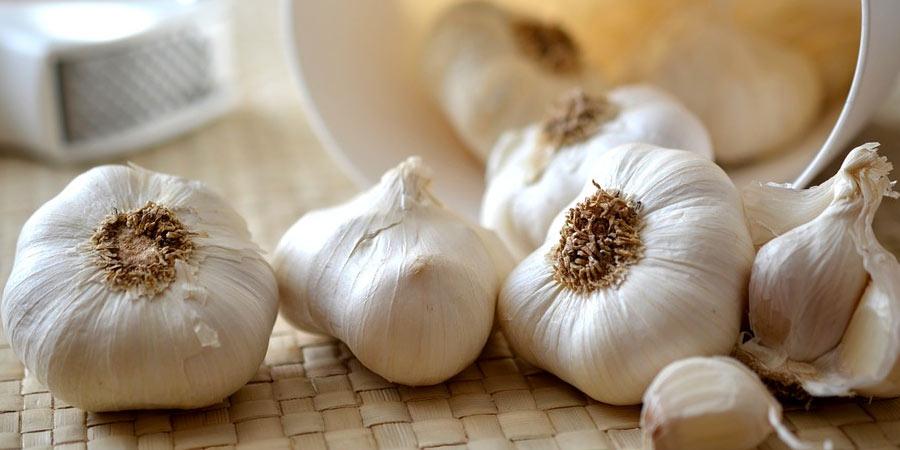 high protein garlic