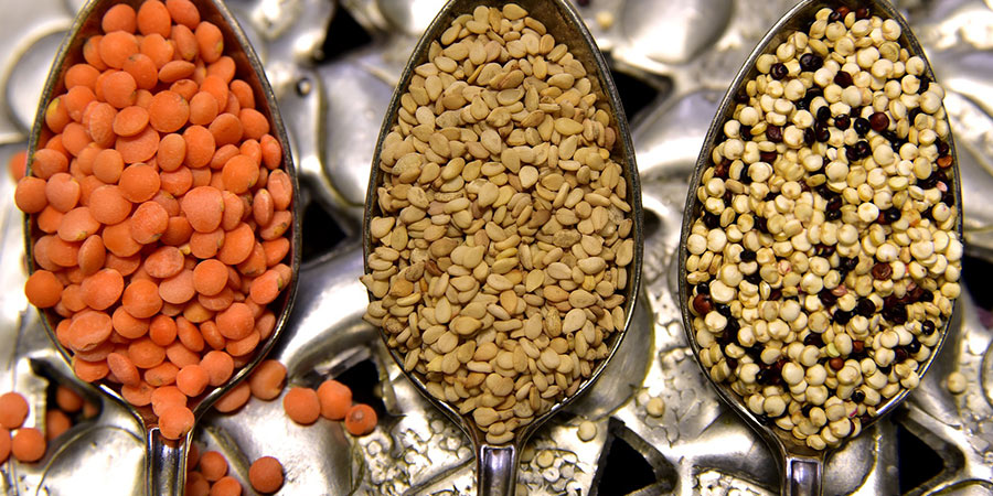lentils high protein food